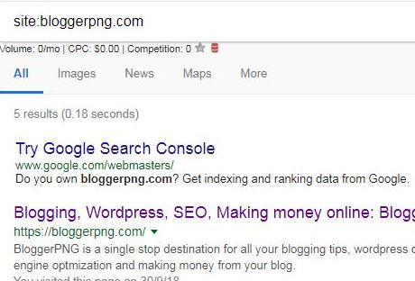 Google no indexing website